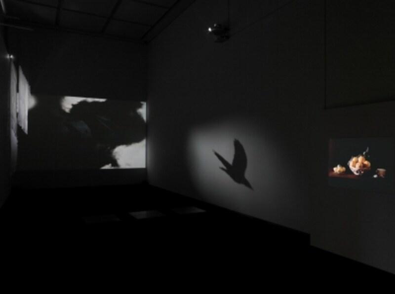 MOTCollection,東京都現代美術館,2011undefinedPhoto(C)椎木静寧