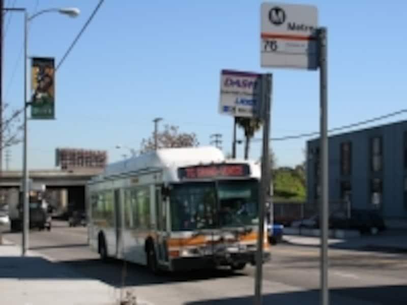 メトロバスを利用すればどこにでも行けちゃいます!