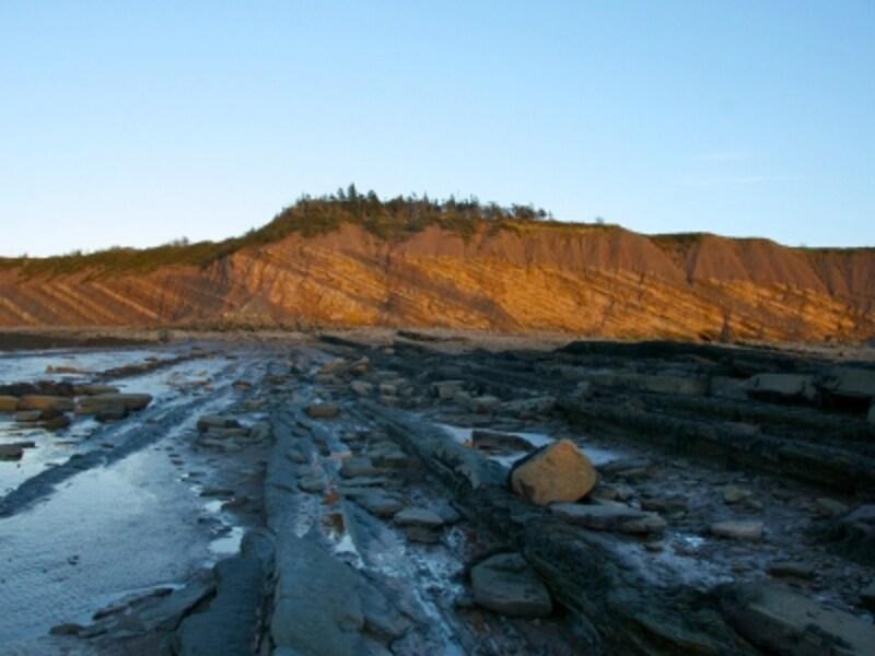 干満の差が激しいファンディ湾に面する化石の崖。その潮の満ち干きの影響で、常に新しい壁面を露出(C)WallyHayes