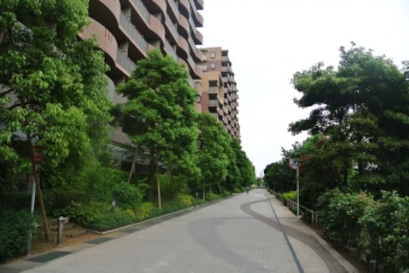 サウザンドシティ横の通り道