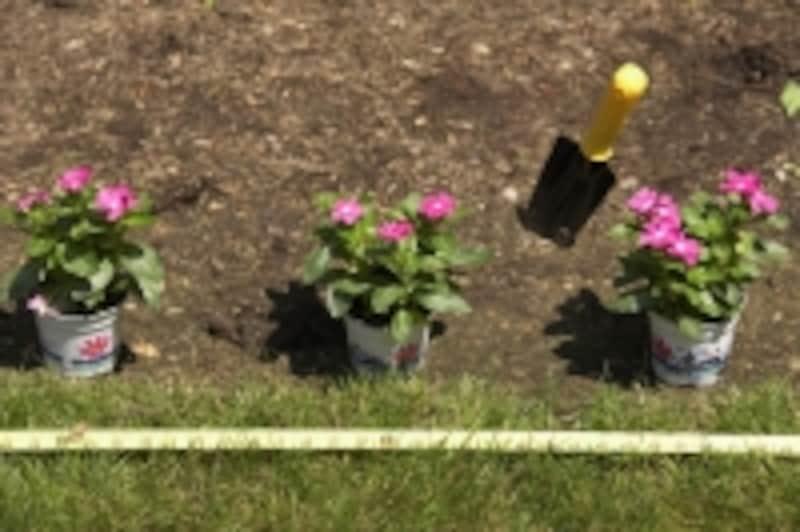 専用庭で植物や花を育てることができる