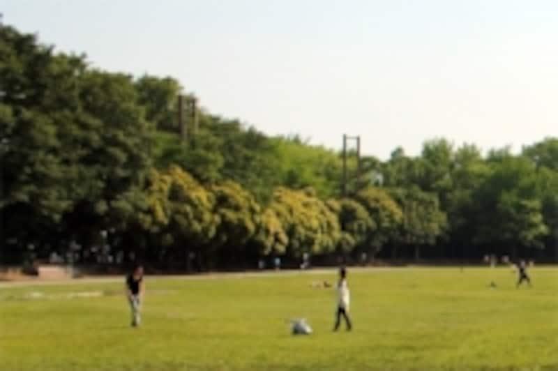 badmintoninpark