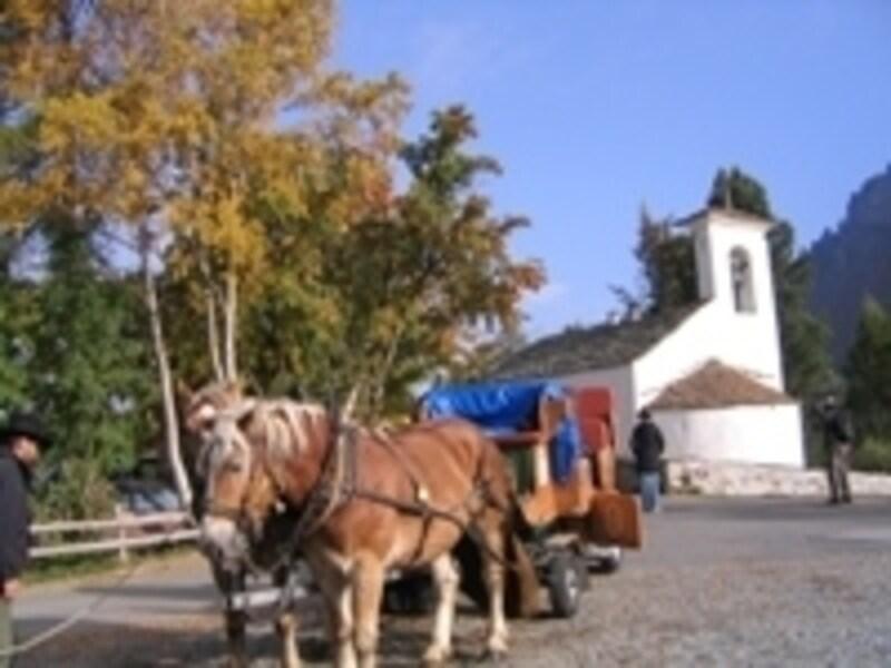 フェックス谷を行き交う馬車