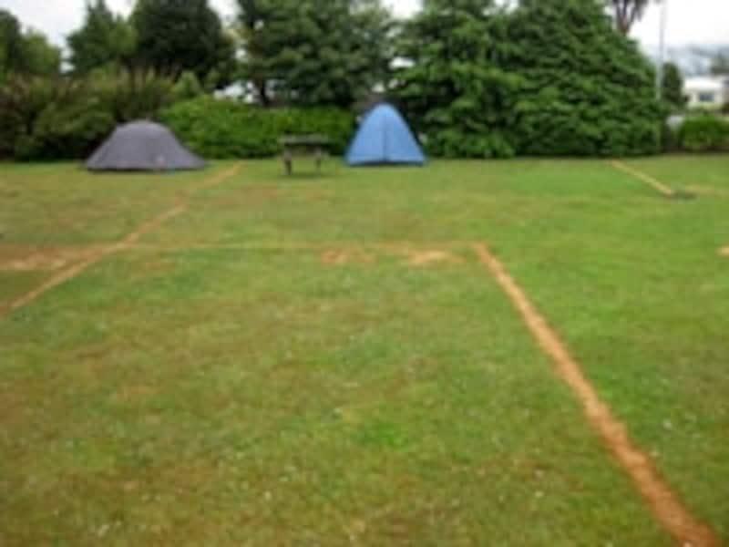 テント用の宿泊スペース