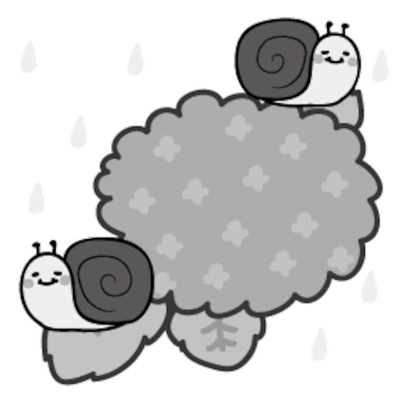 かたつむり 梅雨 イラスト 白黒 かわいい