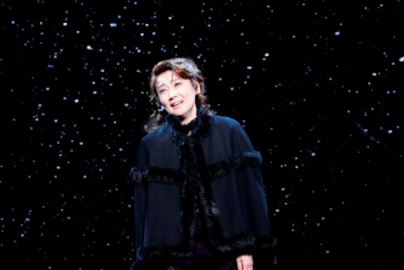 『アンナ・カレーニナ』2013年上演舞台より。撮影:齋藤清貴