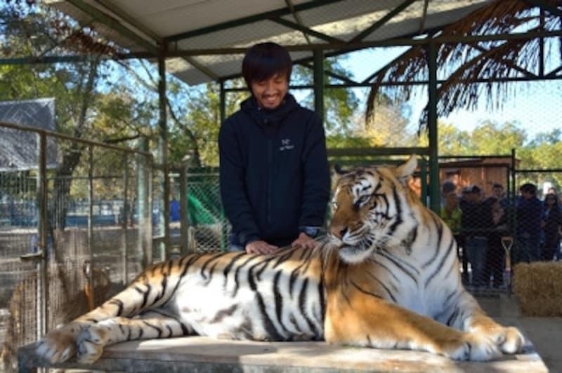 ルハン動物園は、世界でも珍しい猛獣と触れ合えるスポットundefined写真提供:MeetSourceTrip