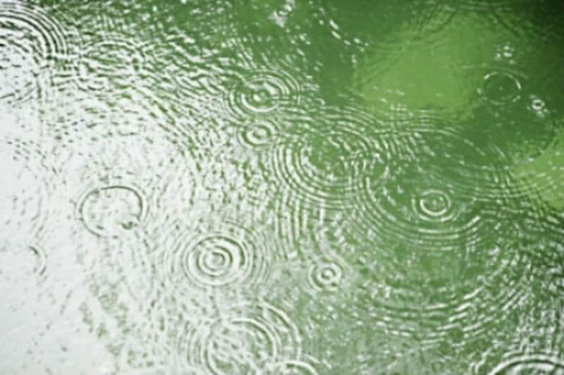 スキューバダイビング,雨