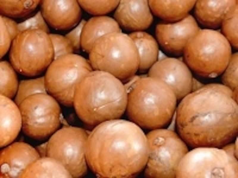 固い殻で覆われたマカデミアナッツ