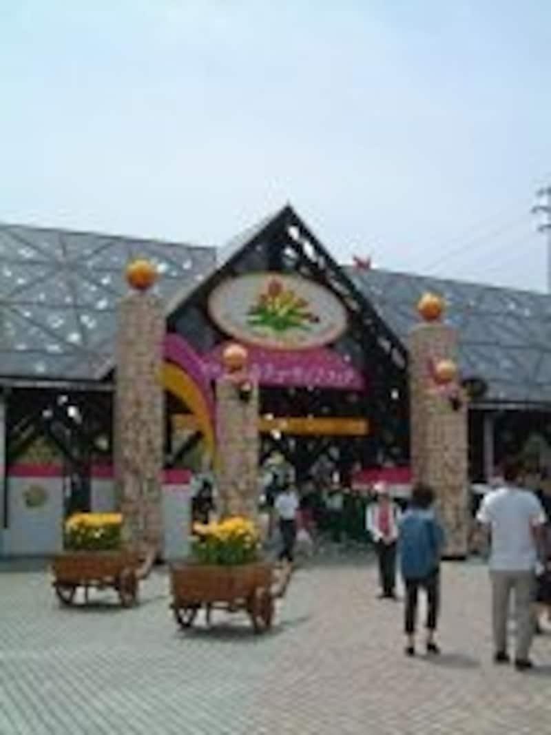 となみチューリップフェア(2)/入口