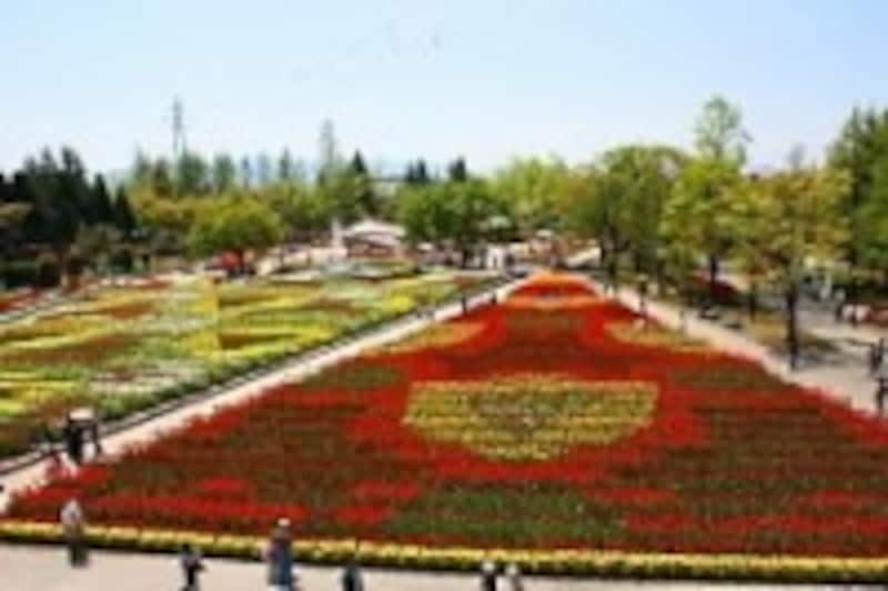 となみチューリップフェア(5)/2009年の花絵