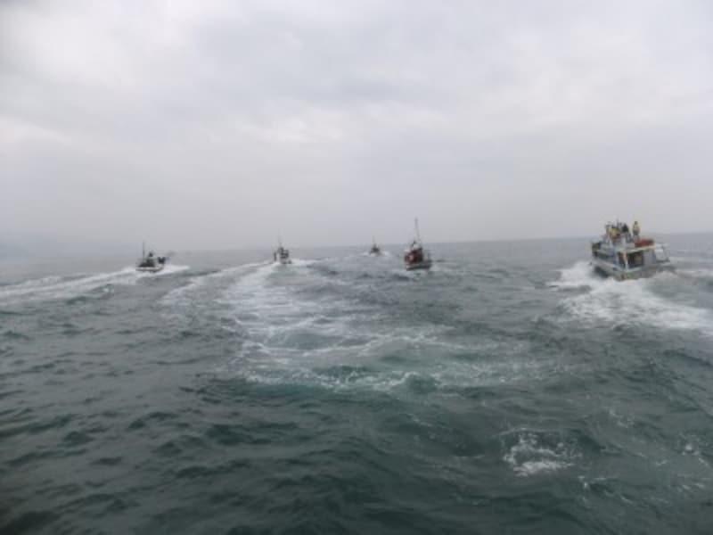 イルカが見られるポイントへ向かうイルカウォッチングの船たち