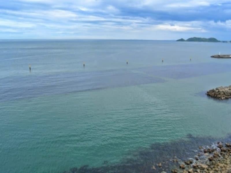 美しい海と豊かな緑が感じられる、徳島県・鳴門