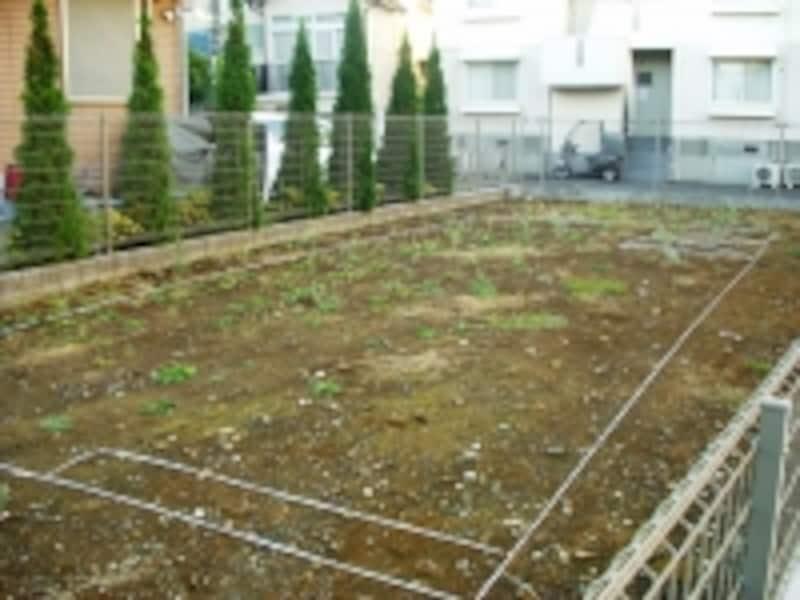 敷地の写真