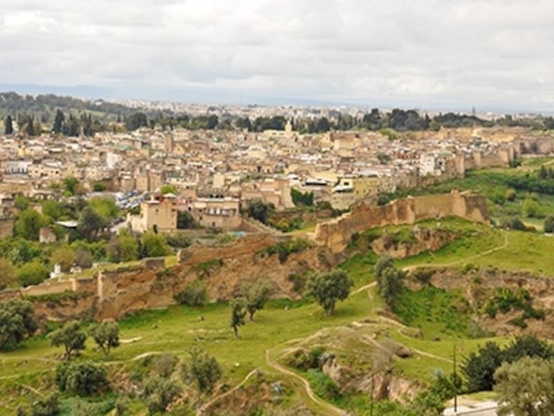 「マリーン朝の墓地」から街を見下ろすフェズ旧市街