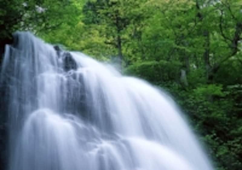 水のせせらぎ音などはリラックス効果がありおすすめです。