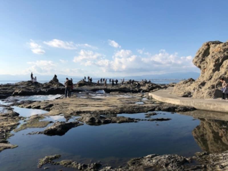 海蝕台地である稚児ヶ淵は、磯遊びや磯釣りの名所になっています