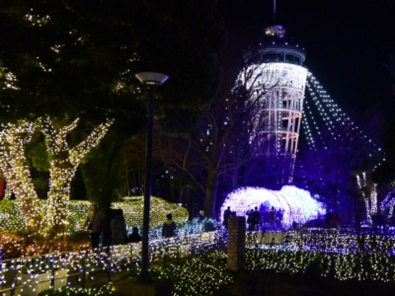 ライトアップイベント「湘南の宝石」