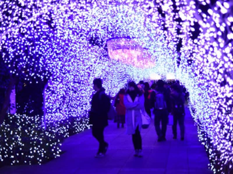 数万個のクリスタルビーズを使用した光のアーチ