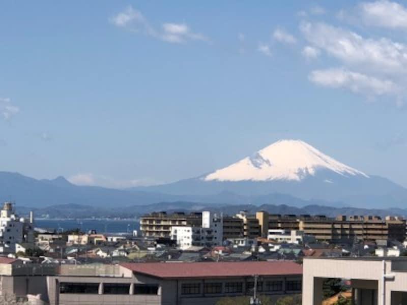 「湘南江の島」駅のルーフテラスからは、富士山がどーんと大きく見えます!