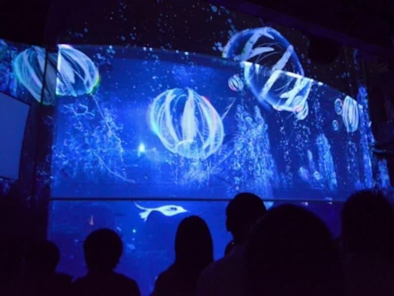 リニューアル10周年特別企画「ナイトアクアリウム」(写真提供:新江ノ島水族館)
