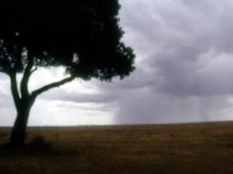 raincolumn