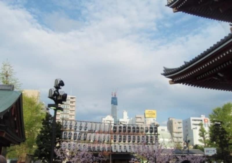 浅草寺の境内からも、東京スカイツリーが見える。浅草は、身近なエリア