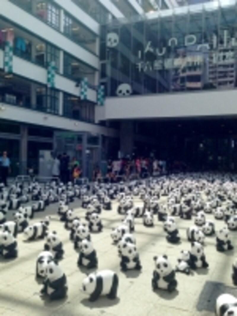 1600頭とは現在地球上に生存するパンダの数