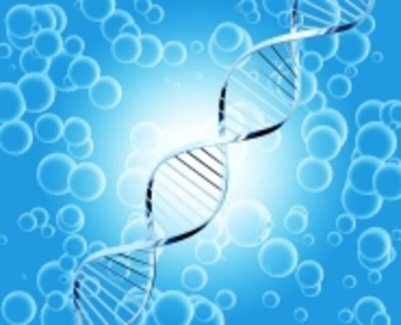 株主優待でお得に遺伝子検査が出来る!