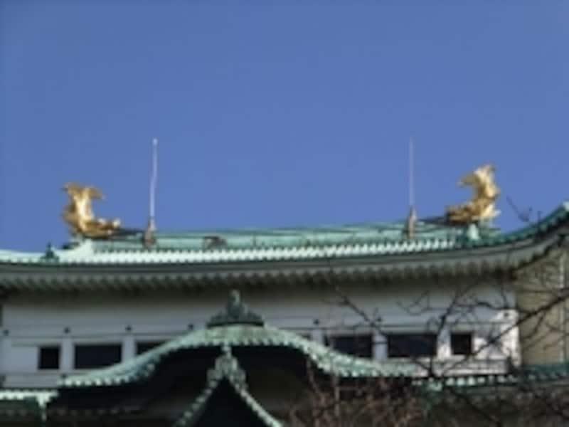 名古屋城(2)/大天守の上にきらめく金の鯱