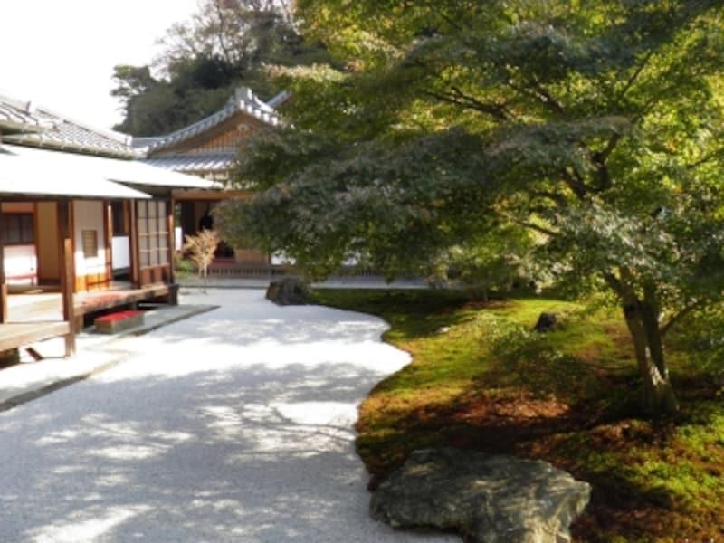 白砂やモミジが美しい長寿寺の庭園