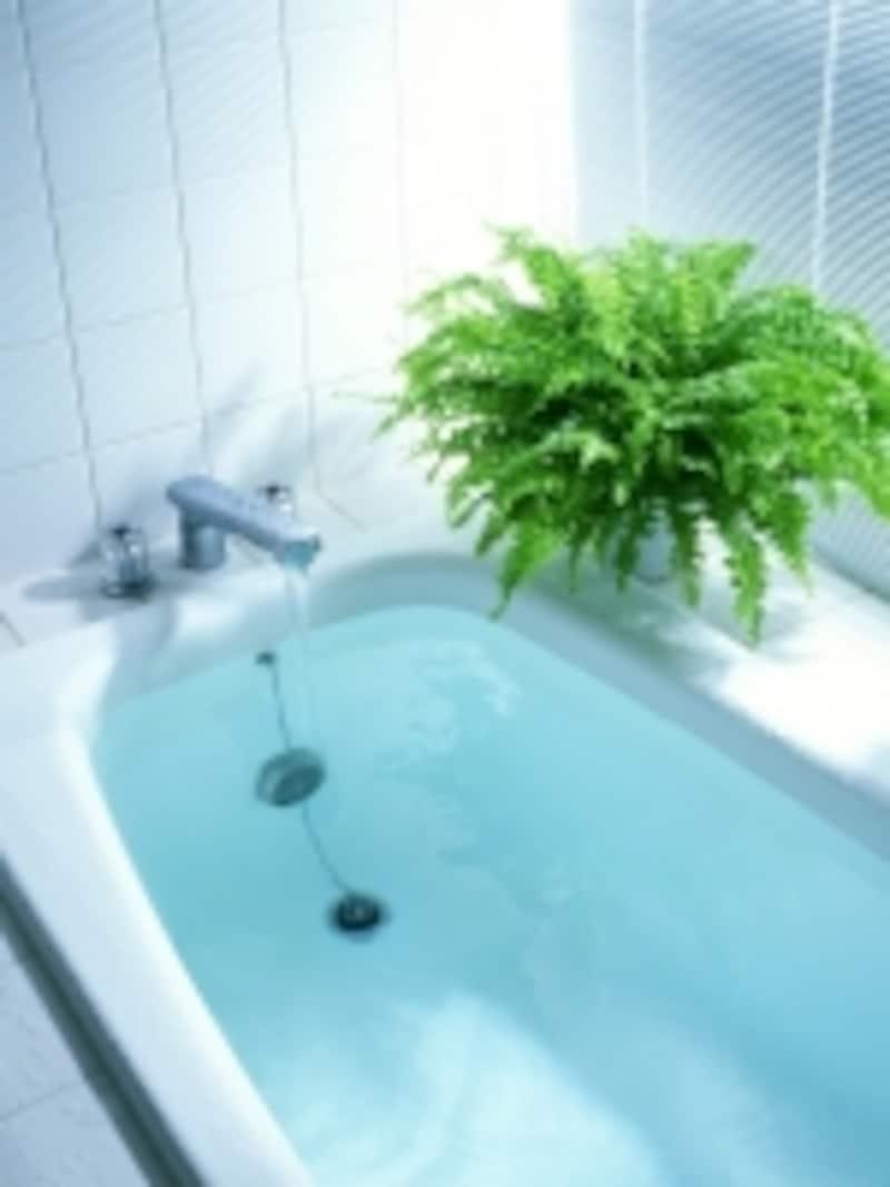 浴室をしっかり掃除しましょう