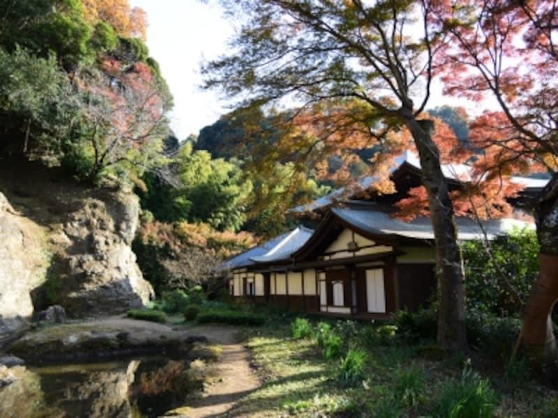 瑞泉寺の紅葉と石庭