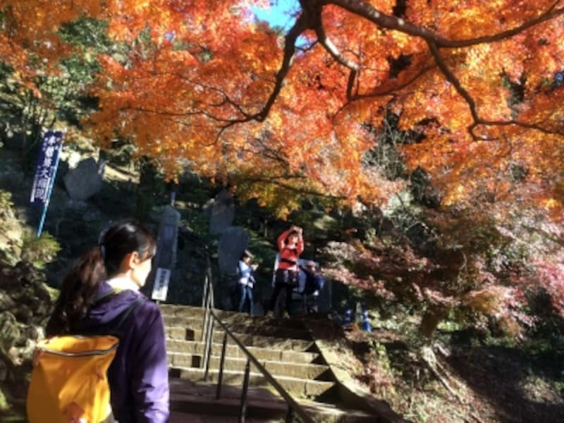 半僧坊への石段と紅葉