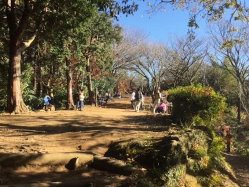 「天園峠の茶屋」があった場所は、現在、更地になっています(2016年12月11日撮影)