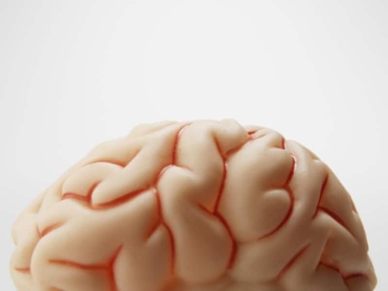 脳神経の語呂合わせ