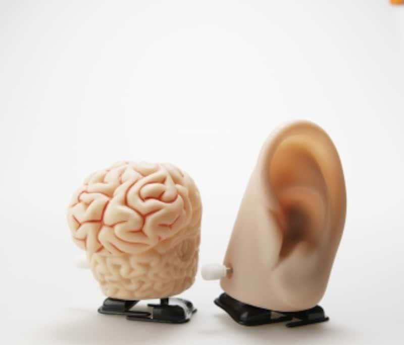 脳神経の機能と覚え方「さんさん名古屋」
