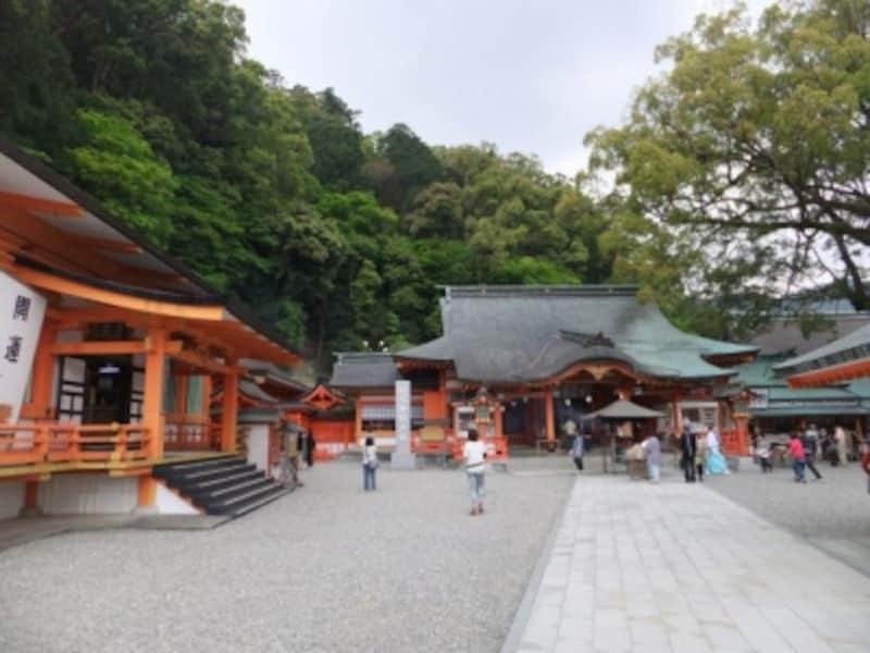 熊野那智大社(3)/朱塗りの本殿と境内