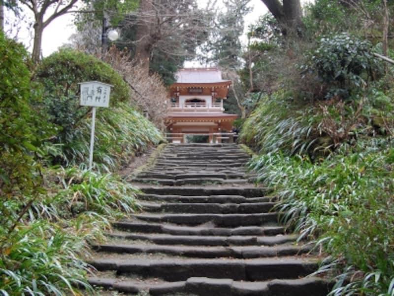 浄智寺山門への石段