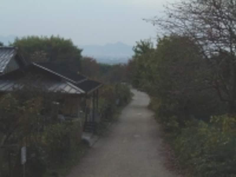 桧原神社(4)/参道と二上山