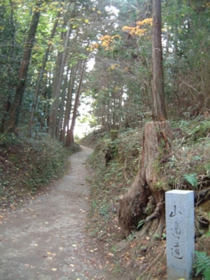 山の辺の道(1)