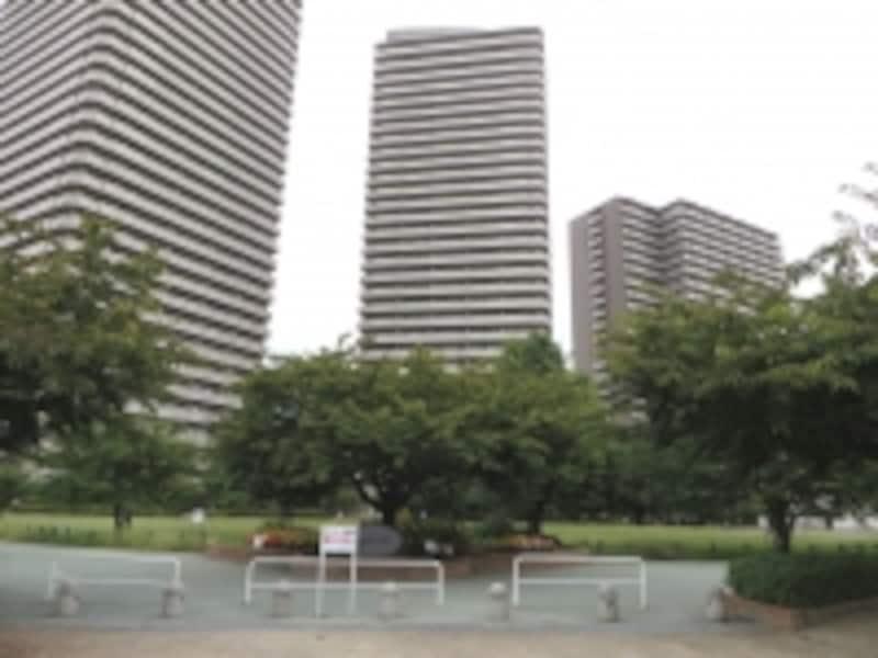 公園とタワーマンション