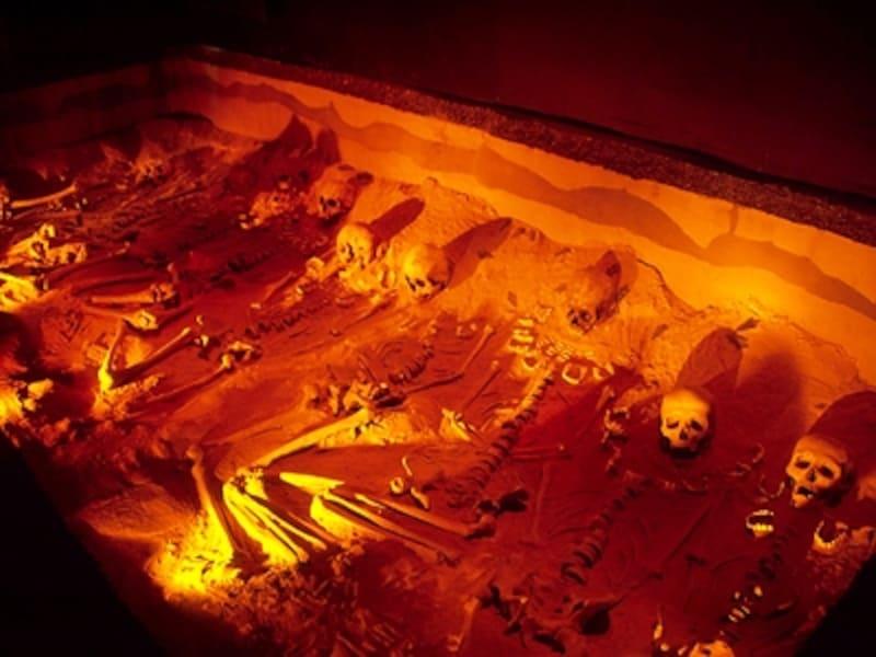 テオティワカンではアステカのような生け贄はないとされてきたが、最近の発掘で他民族の人々を人身御供にしていたことがわかってきた©牧哲雄