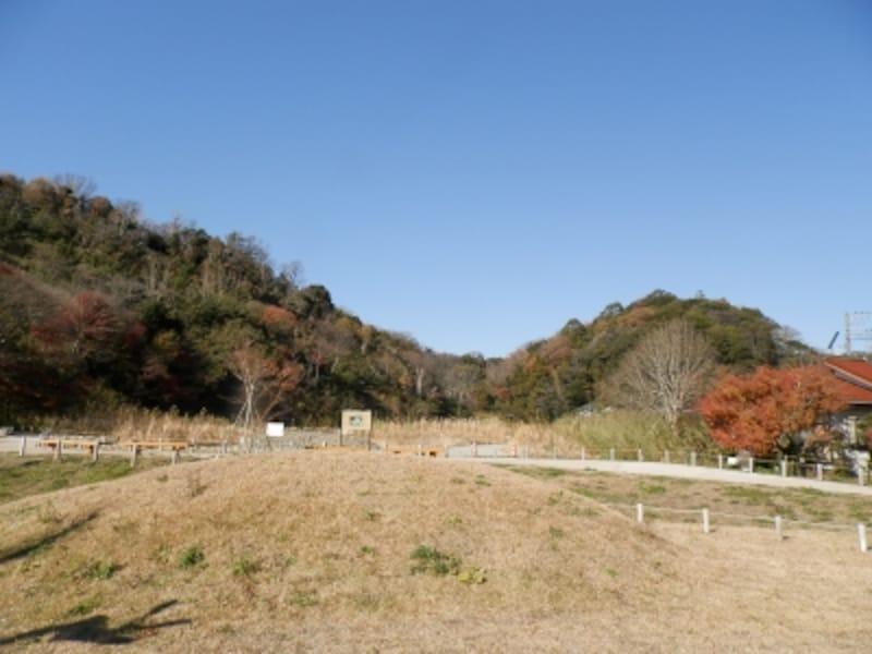 のびやかな野原が広がる永福寺跡