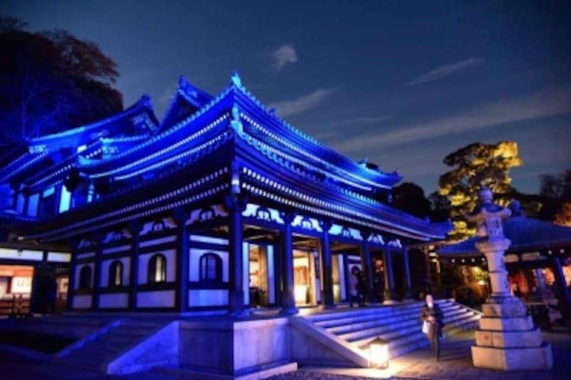 青色の光に幻想的にライトアップされた、長谷寺本堂(2016年12月8日撮影)