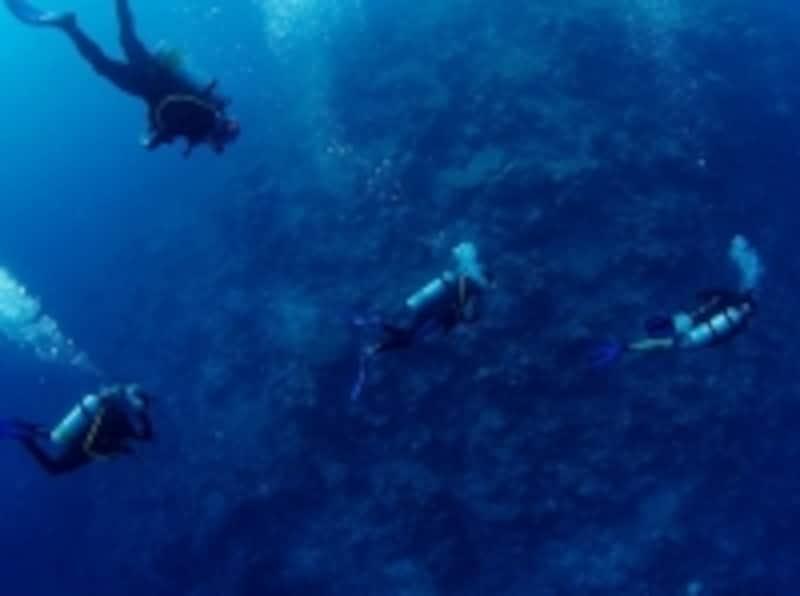 ディープブルーの海