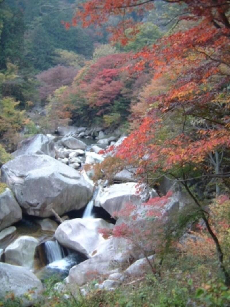 昇仙峡の紅葉・黄葉(1)