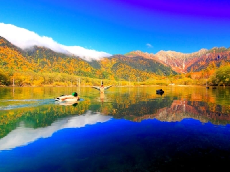 紅葉の大正池