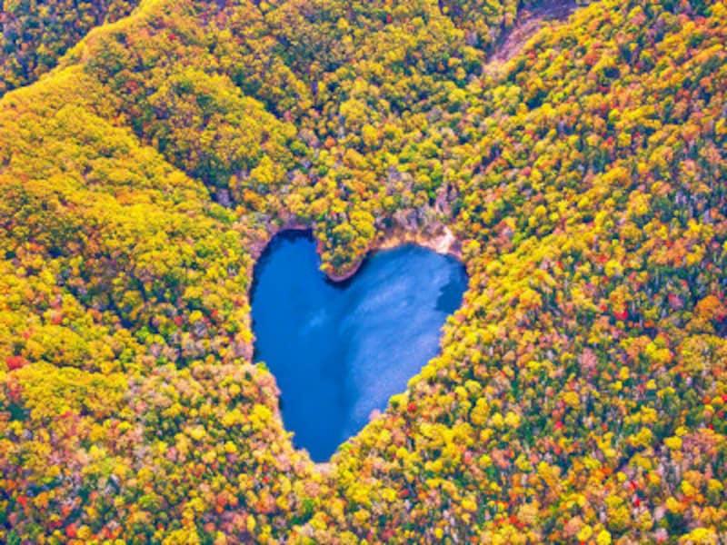 豊似湖の紅葉