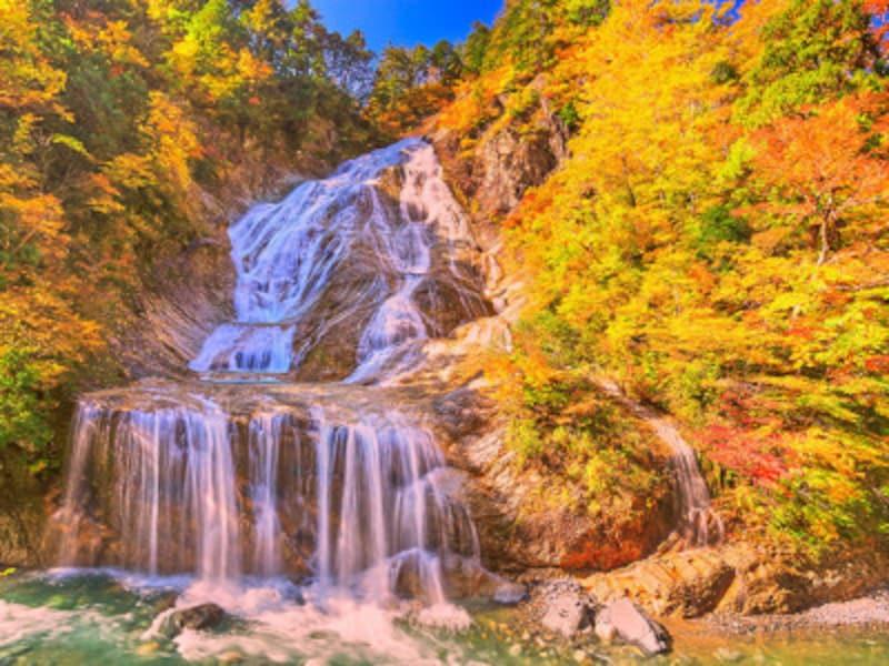白山白川郷ホワイトロード・姥ヶ滝の紅葉